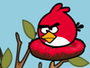 送愤怒的小鸟回家