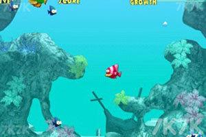 《大鱼吃小鱼2》截图2