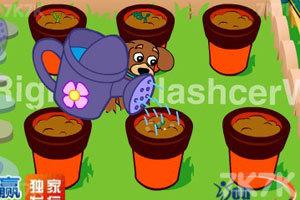 《小狗种美丽鲜花》截图6