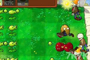 《植物大战僵尸变态版》游戏画面3