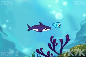 《饥饿的鲨鱼》游戏画面2