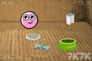 《养只宠物球》游戏画面10