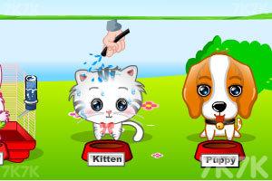 《我的可爱宠物2》截图4