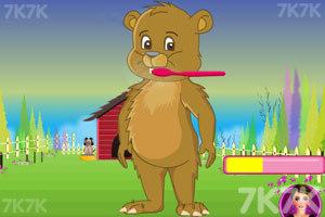 《照顾小脏熊》游戏画面4