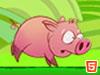 小猪快快跑