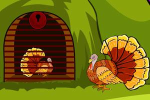 感恩节火鸡逃出笼
