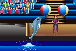 魅力海豚展5