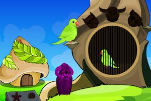 《被困鹦鹉逃脱》游戏画面1