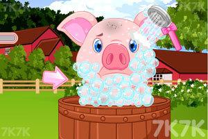 《脏兮兮的小猪》游戏画面2