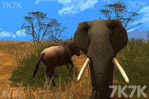 《模拟动物人生2》游戏画面2