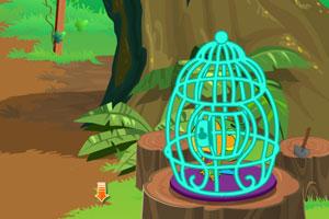 《小鹦鹉逃脱》游戏画面1