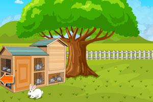 《帮助兔子逃脱鹰眼》游戏画面1