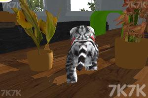 《猫咪停靠》游戏画面2