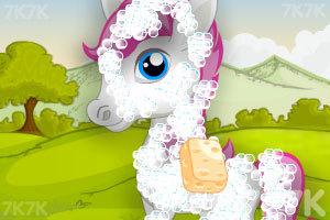 《照顾白色小马》游戏画面2