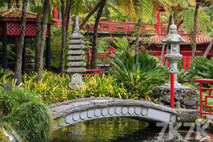 《逃离热带花园》游戏画面2
