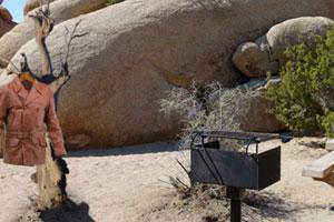 《沙漠旅游逃脱》游戏画面1