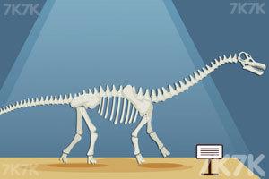 《组装恐龙标本》游戏画面6