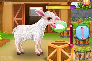 《照顾小羊宝宝》游戏画面2
