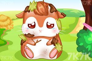《我的仓鼠宝宝》游戏画面4