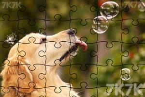 《拼出可爱小狗》游戏画面2