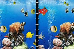 美丽海洋找不同