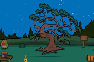 《救援森林鸽》游戏画面1