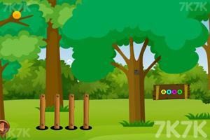 《救援绿色鹦鹉》游戏画面1