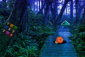 《困在森林的部落女孩》截图1