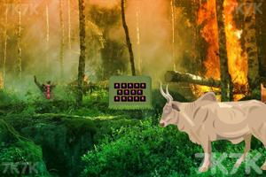 《逃离森林火灾现场》截图2
