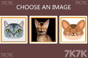 《个性猫拼图》游戏画面1
