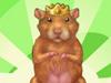 照顾小仓鼠1