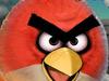 愤怒的小鸟冲冲冲1