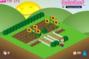 把你的花园照顾好