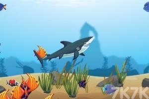 《鲨鱼进化》游戏画面3